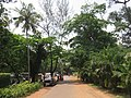 Views around Hill Palace, Tripunithura (55).jpg