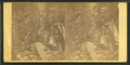 Visitors at the Flume, White Mts. 1864, by H. S. Fifield.png
