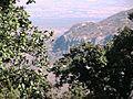 Vista hacia el norteste - panoramio.jpg