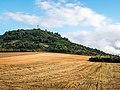 Vitoria - Olarizu - Campo de cereal 02.jpg