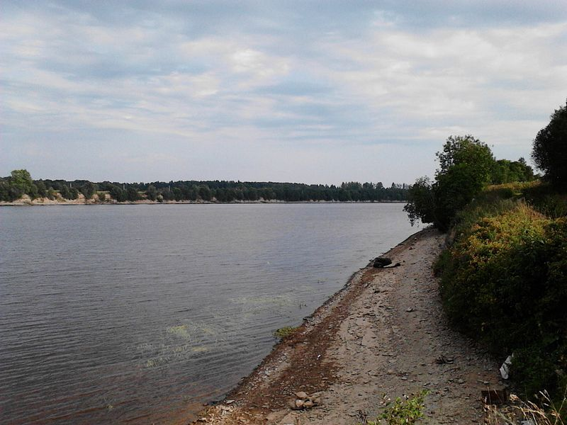 File:Volkhovsky District, Leningrad Oblast, Russia - panoramio (3).jpg