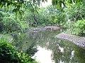 W warszawskim zoo - panoramio.jpg