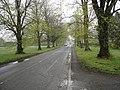 Walwyn Road, Colwall - geograph.org.uk - 1258338.jpg