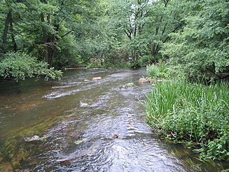 Warnow - River Warnow in a valley