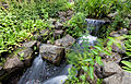 Waterfall, Royal Botanic Garden Edinburgh, Scotland, GB, IMG 3800 edit.jpg