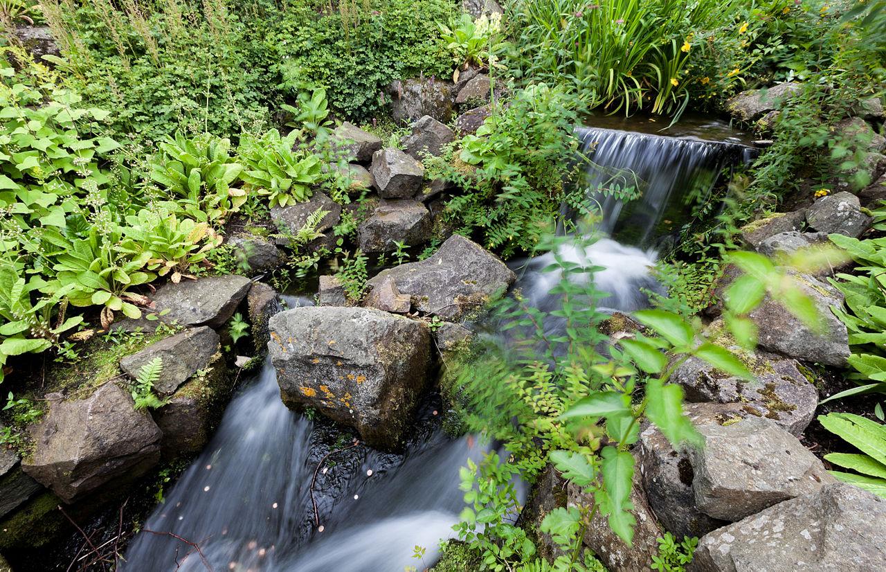File waterfall royal botanic garden edinburgh scotland gb img 3800 wikimedia commons for Royal botanic garden edinburgh