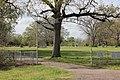 Weaver Cemetery, Hopkins County, Texas (6990918192).jpg