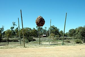 Wentworth, New South Wales - Image: Wentworth NSW Australia roadside art