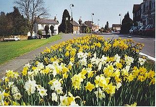 Westcott, Surrey village in Surrey, United Kingdom