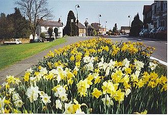 Westcott, Surrey - Image: Westcott geograph.org.uk 135569