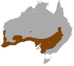 Distribución de M. fuliginosus