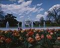 White House Spring 1975 I.jpg