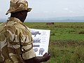 White rhino monitoring (6880953415).jpg