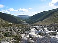 Wicklow Mountains 2004.jpg