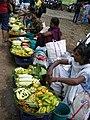 Wild Fruits Forest Produce in SGNP Mumbai by Raju Kasambe DSCF0144 (1) 06.jpg