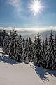 Winter auf der Brockenbahn im Harz.jpg