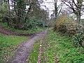 Winters Lane, Omagh - geograph.org.uk - 1238179.jpg