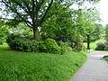 Wuppertal Hardt 2014 093.JPG