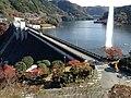 Yabakeimachi Oaza Oshima, Nakatsu, Oita Prefecture 871-0431, Japan - panoramio (18).jpg