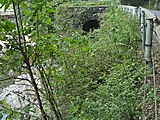Yanase forest railway02.JPG