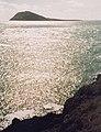 Ynys Enlli - Bardsey Island - geograph.org.uk - 382643.jpg