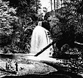 Youngs River Falls, 1883.jpeg