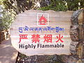 Zangwen-highly flammable.jpg