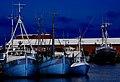 Zealand 2014-05-16 (14044903399).jpg