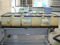 Zebra mussel filtration.png