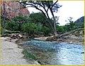 Zion, First Light, Virgin River 4-30-14n (14251882673).jpg