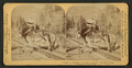 """I helped to build Pike's Peak railroad myself,"" Colorado, U.S.A, from Robert N. Dennis collection of stereoscopic views.png"