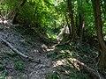 """""""Rundweg"""" um den Monte San Giorgio (UNESCO-Welterbe) (23351974085).jpg"""