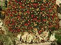 Árvore de Natal do Shopping Center Rio Mar (detalhe).JPG