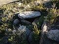 Étangs de La Jonquera - Dolmen Estanys III - 2.jpg