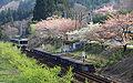Ōkawa-Dam-Kōen Station 003.JPG