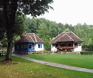 Brankovina - Brankovina village