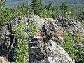 Вершина Караташа (1011,9М) - panoramio.jpg