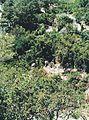 Вид на старе місто Олімпос.jpg