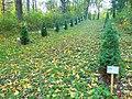 Вінничина, Муровані Курилівці парк Жван 11.jpg