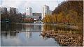 Голосеево озеро 9x16.jpg