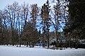 """Дендропарк """"Подолье"""". Фото 12.jpg"""