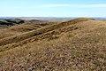 Козьи горы. Вид в южном направлении - panoramio.jpg