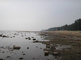 Сгон воды (Район Комарово)