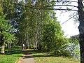 Сестрорецкий парк Дубки. Дорожка вдоль берега. - panoramio.jpg