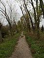 Стежинка дамбою восени - panoramio.jpg