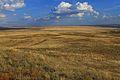 Урочище Утиная гора 5 - panoramio.jpg