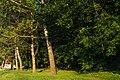 Усадьба Салтыкова (Детский парк имени 1 мая) 5.jpg