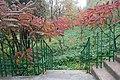 Юннатський дендрологічний парк, Київ, Вишгородська 02.jpg