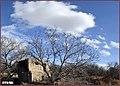 زمستان. باغهای اطراف مراغه - panoramio (1).jpg