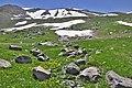 چشم اندازی در دامنه های سبلانA view of Sabalan mountain - panoramio.jpg